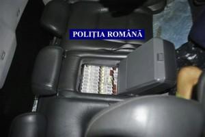 tigari in masina (3)